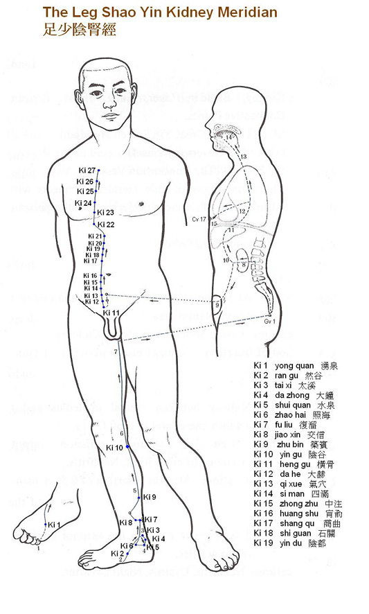 dim mak pressure points charts & instruction pdf