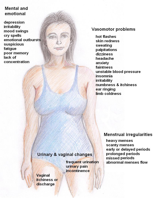 Menopause Symptoms in Women.