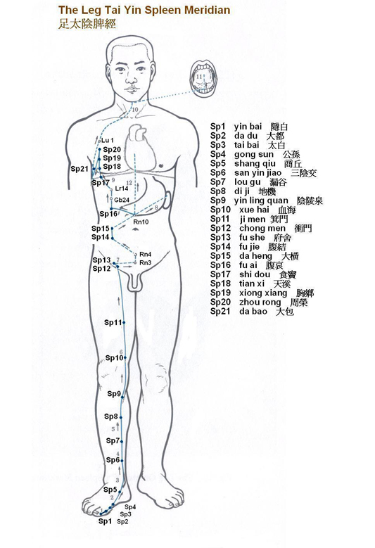 how to learn acupuncture points
